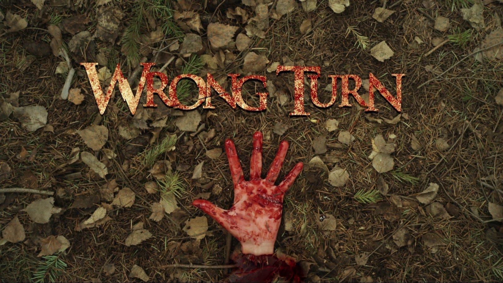 Первая часть кинофильма вышла в 2003 году, а последняя - в 2014 году