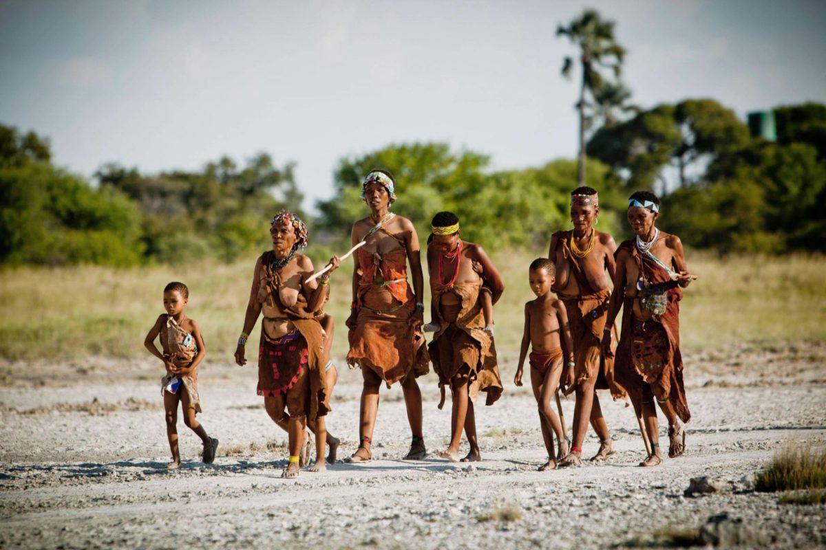 Племена бушменов можно считать древнейшими представителями человечества