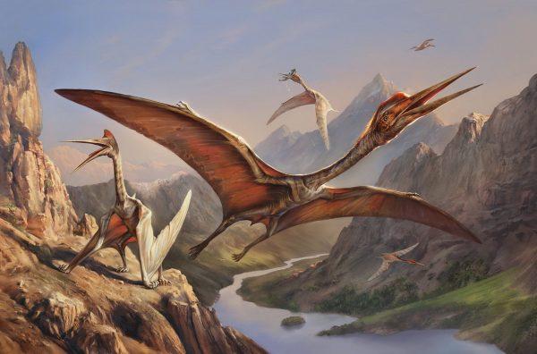 Считается, что кетцалькоатль жил примерно 70 миллионов лет назад в самом конце эры динозавров. Некоторые ученые предполагают, что истинные размеры ящера были значительно больше, чем принято сейчас