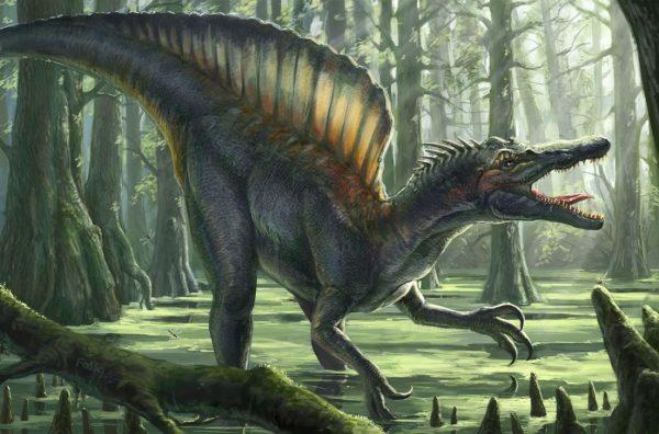 Спинозавр стал главным пугалом в приключенческом фильме «Парк Юрского периода 3». Там его показали более страшным хищником нежели знаменитый Тираннозавр Рекс. Однако с реальным образом киноящер слабо сочетается