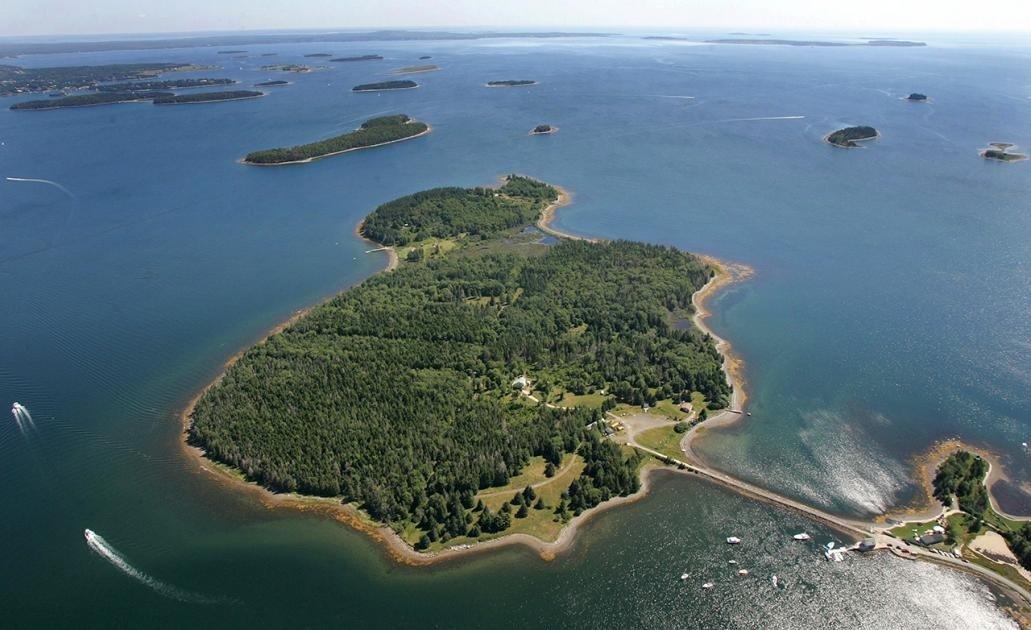 Существует гипотеза, что на острове Оук спрятаны пиратские сокровища