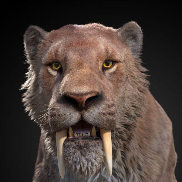 Такие вот кисы бродили пару миллионов лет назад по прериям и равнинам Северной и Южной Америк. Отличительная черта – длинные верхние клыки, выходящие далеко за пределы пасти. Такие зубы служили для захвата жертвы. Желательно за горло
