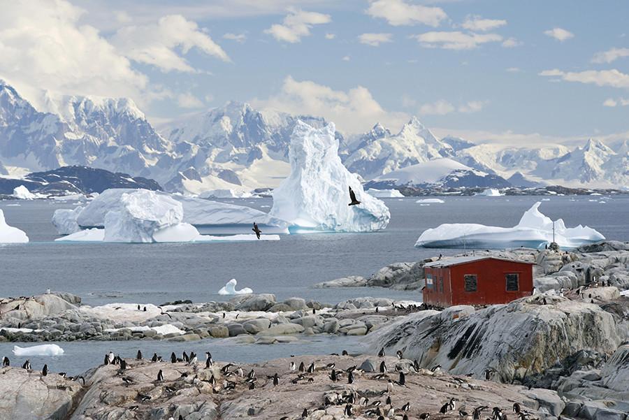 Вестарктика - очень активное государство, которое устанавливает международные отношения с другими странами